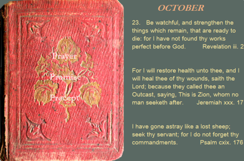 Prayer, promise, precept oct. 23