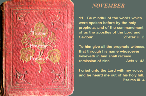 Prayer, promise, precept NOV. 11